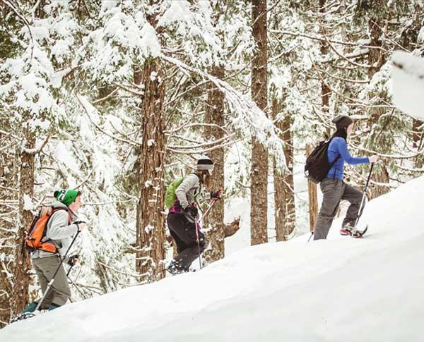 Explore Cariboo in the winter