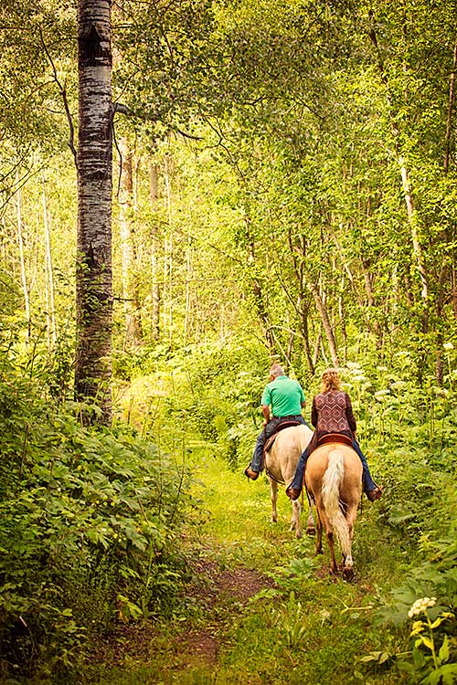 Horseback riding in the Cariboo