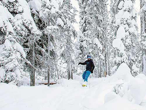 Snowboarding in the Cariboo